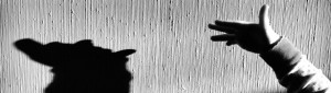 cropped-shadow-puppet1.jpg