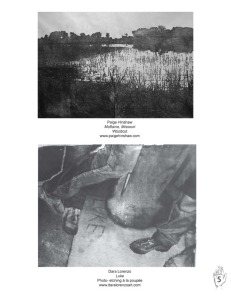 7.Page 5_Hinshaw&Lorenzo