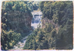 "Jodie Hooker, Letchworth State Park #1, Tricolor gum over cyanotype, 18""x 24"" http://hookerj.com/home.html"