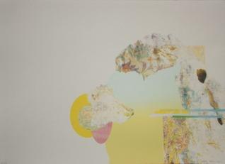 "Heather Huston, Lost Texts Readable, Silkscreen, 11""x 15"" http://www.hhuston.com"