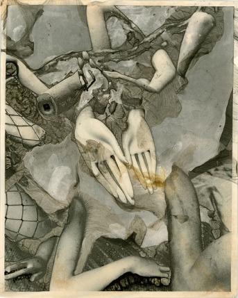"""Ellie Ivanova, Catch, Mordancage, 10""""x 8"""" http://ellieivanovaphotography.com"""