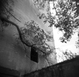 Savannah Padgett, Peekaboo- Recovered, Archival pigment print from Holga film negative.