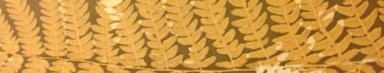 Fern Lumen Border Crop
